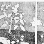 maulwurf detail pflanzen