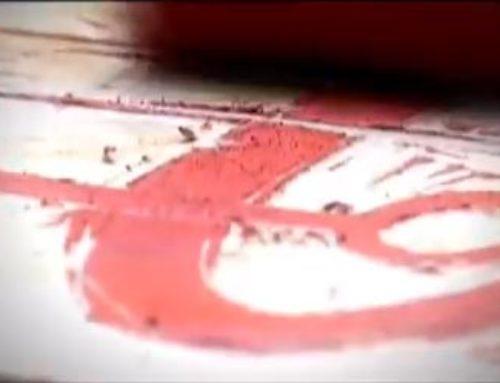 Künstler-Portrait Birgit Bachmann (Video)